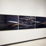 SONAR: Art Gallery of Alberta (AGA) 2014